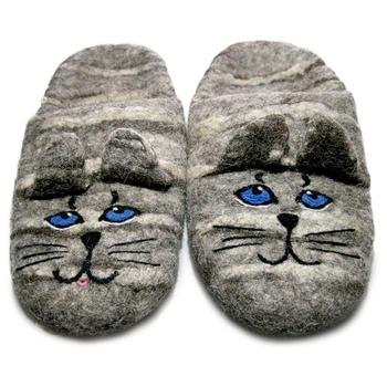 Коты с синими глазами